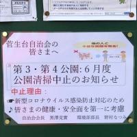 Img_6853